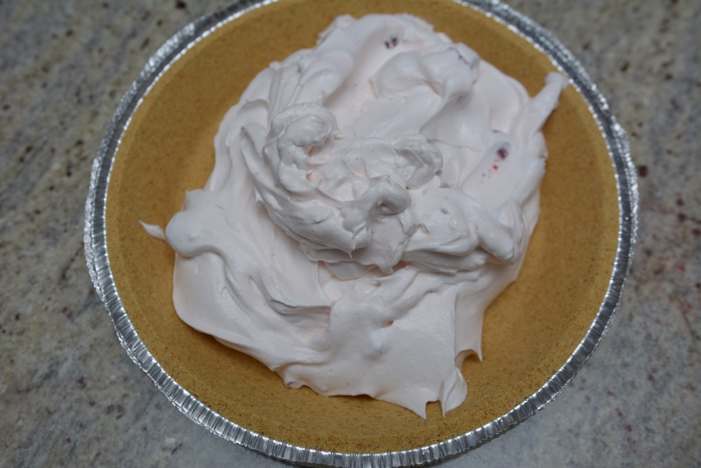 Using a spatula, place Yogurt mixture into Graham Cracker crust.